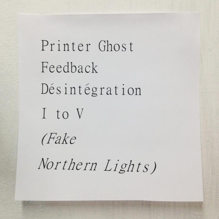 FNL1 copy